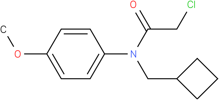 2-chloro-N-(cyclobutylmethyl)-N-(4-methoxyphenyl)acetamide