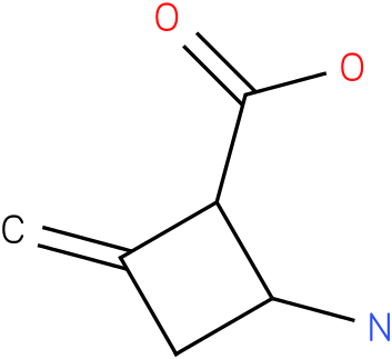 2-Amino-4-methylene-cyclobutanecarboxylic acid