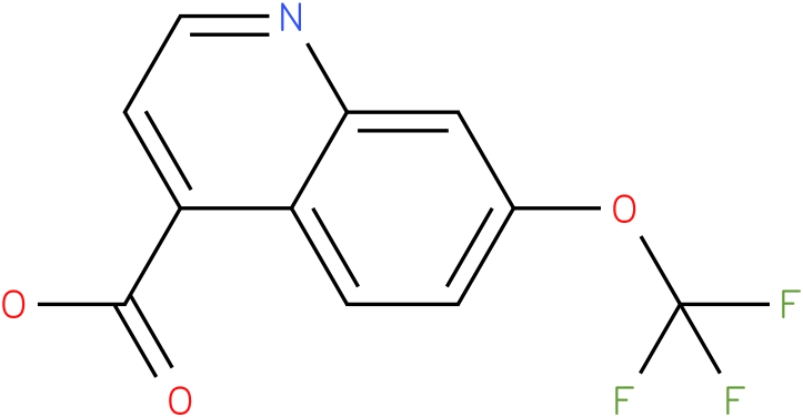 7-trifluoromethoxy-quinoline-4-carboxylic acid