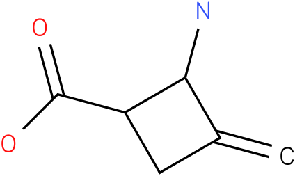 2-Amino-3-methylene-cyclobutanecarboxylic acid
