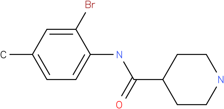 Piperidine-4-carboxylic acid (2-bromo-4-methyl-phenyl)-amide