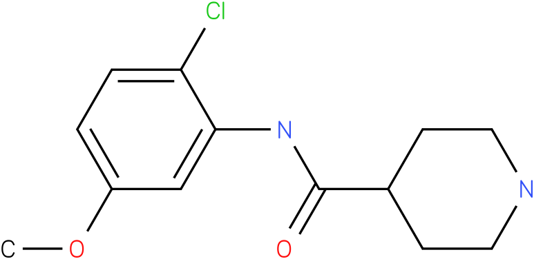 Piperidine-4-carboxylic acid (2-chloro-5-methoxy-phenyl)-amide