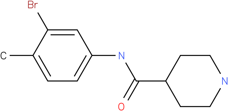 Piperidine-4-carboxylic acid (3-bromo-4-methyl-phenyl)-amide