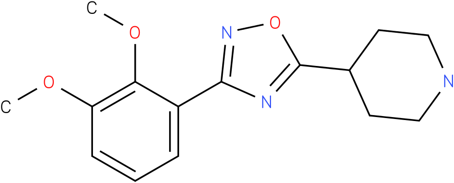 4-[3-(2,3-Dimethoxy-phenyl)-[1,2,4]oxadiazol-5-yl]-piperidine