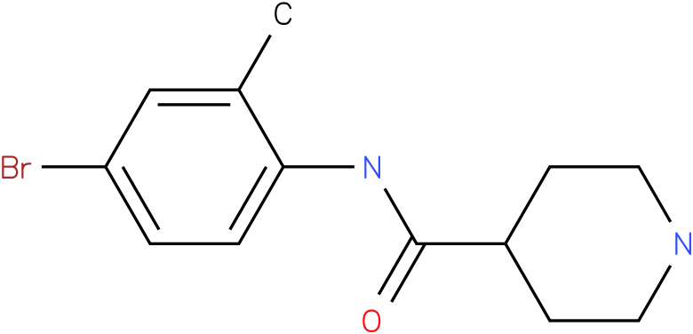 Piperidine-4-carboxylic acid (4-bromo-2-methyl-phenyl)-amide