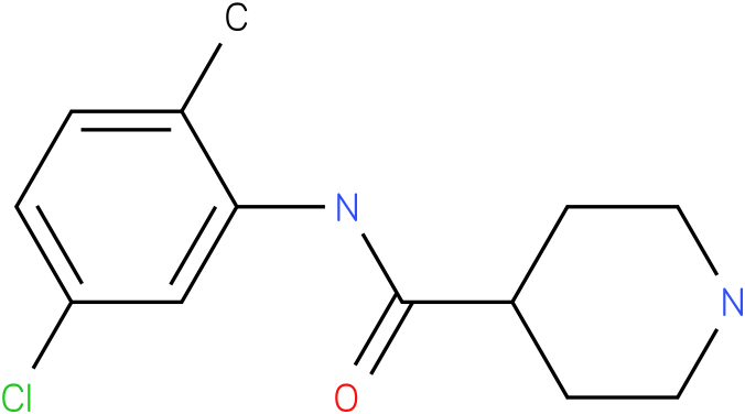 Piperidine-4-carboxylic acid (5-chloro-2-methyl-phenyl)-amide