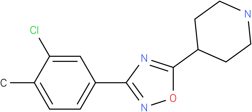 4-[3-(3-Chloro-4-methyl-phenyl)-[1,2,4]oxadiazol-5-yl]-piperidine