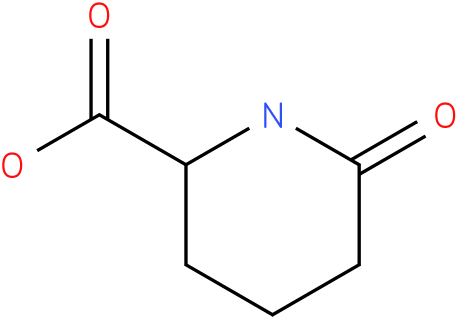 6-OXO-PIPERIDINE-2-CARBOXYLIC ACID